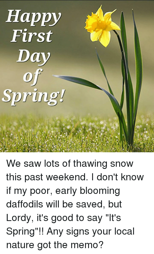 Snow On First Day Of Spring Makes Me >> Happy First Day Spring We Saw Lots Of Thawing Snow This Past