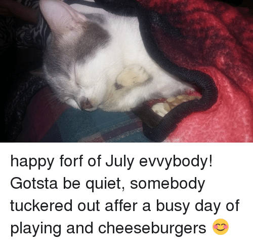 Happy Forf Of July Evvybody Gotsta Be Quiet Somebody Tuckered Out
