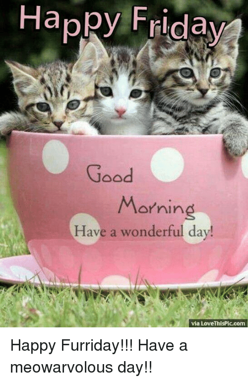 Happy Friday Good Morning Have A Wonderful Day Via Lovethispiccom
