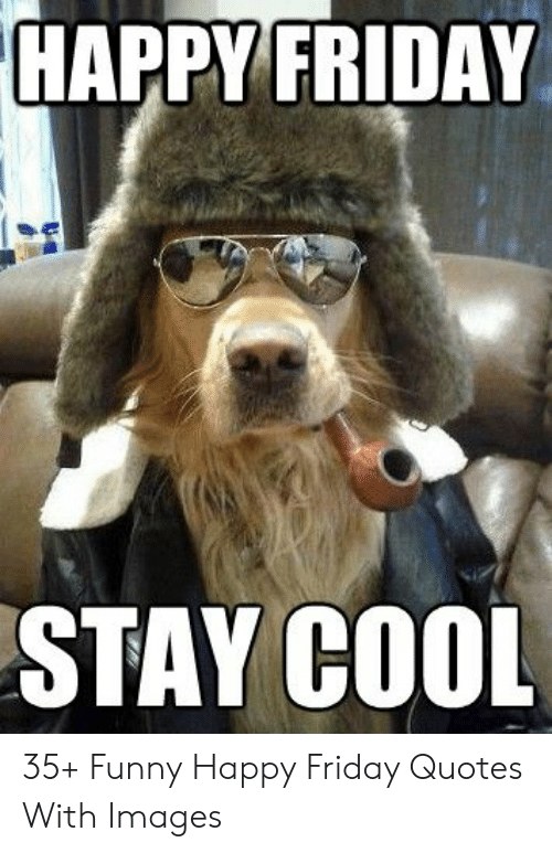 Happy Friday Stay Cool 35 Funny Happy Friday Quotes With