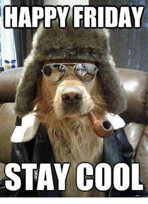 happy friday stay cool 6001102 happy friday stay cool friday meme on me me