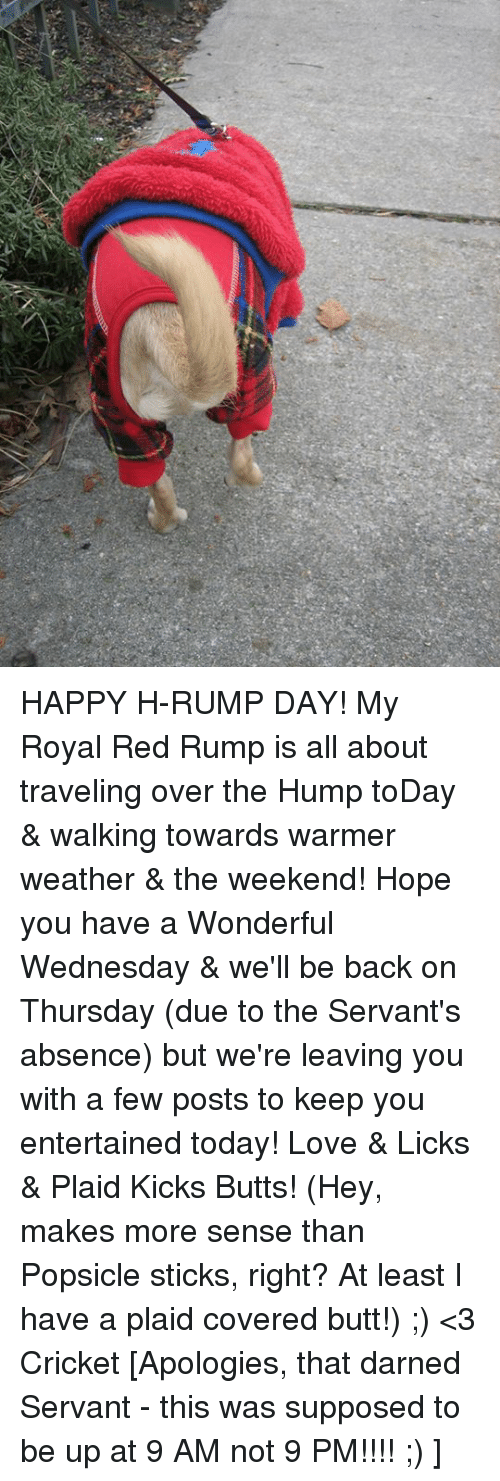 Memes, Cricket, and Royals: HAPPY H-RUMP DAY!  My Royal Red Rump is all about traveling over the Hump toDay & walking towards warmer weather & the weekend!  Hope you have a Wonderful Wednesday & we'll be back on Thursday (due to the Servant's absence) but we're leaving you with a few posts to keep you entertained today!  Love & Licks & Plaid Kicks Butts!  (Hey, makes more sense than Popsicle sticks, right? At least I have a plaid covered butt!) ;)  <3 Cricket  [Apologies, that darned Servant - this was supposed to be up at 9 AM not 9 PM!!!!  ;) ]
