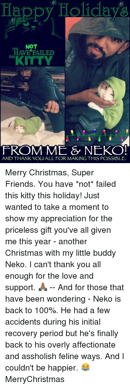 Kitties, Memes, and Period: Happy Holiday  NOT  HAVE FAILED  KITTY  FROM ME & NEKO!  AND THANK YOU ALL FOR MAKING THIS POSSIBLE. Merry Christmas, Super Friends. You have *not* failed this kitty this holiday! Just wanted to take a moment to show my appreciation for the priceless gift you've all given me this year - another Christmas with my little buddy Neko. I can't thank you all enough for the love and support. 🙏🏾 -- And for those that have been wondering - Neko is back to 100%. He had a few accidents during his initial recovery period but he's finally back to his overly affectionate and assholish feline ways. And I couldn't be happier. 😂 MerryChristmas