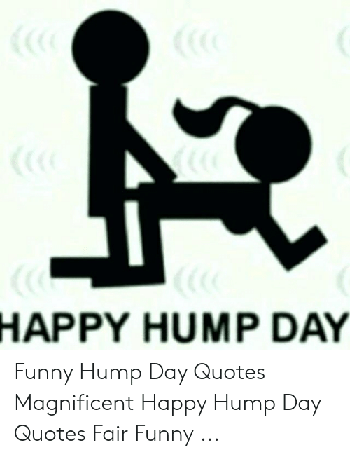 happy hump day funny hump day quotes magnificent happy hump day