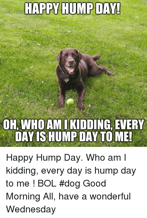 Hump Day, Memes, and Who Am I: HAPPY HUMP DAY!  OH, WHO AMIKIDDING, EVERY  DAY IS HUMP DAY TO ME Happy Hump Day. Who am I kidding, every day is hump day to me !    BOL   #dog Good Morning All, have a wonderful Wednesday