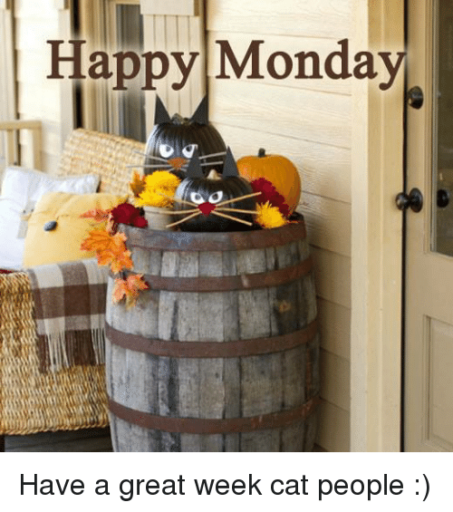 Image result for happy Monday have a great week images