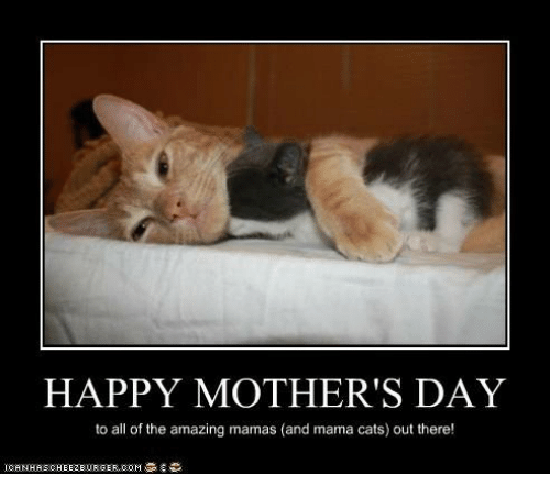 happy-mothers-day-to-all-of-the-amazing-