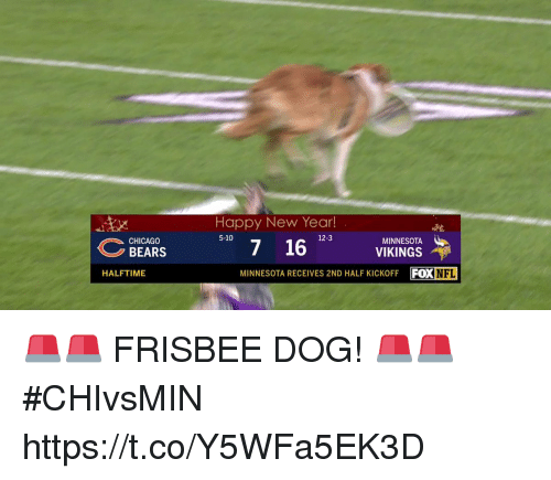 Chicago, Chicago Bears, and Memes: Happy New Year!  12-3  7 16 VIKINGS  MINNESOTA RECEIVES 2ND HALF KICKOFF FOXNFL  MINNESOTA  CHICAGO  BEARS  HALFTIME 🚨🚨 FRISBEE DOG! 🚨🚨  #CHIvsMIN https://t.co/Y5WFa5EK3D