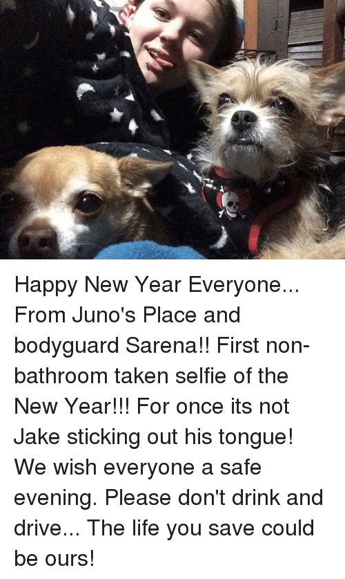 Memes, Juno, and 🤖: Happy New Year Everyone... From Juno's Place and bodyguard Sarena!!  First non-bathroom taken selfie of the New Year!!! For once its not Jake sticking out his tongue!  We wish everyone a safe evening. Please don't drink and drive... The life you save could be ours!