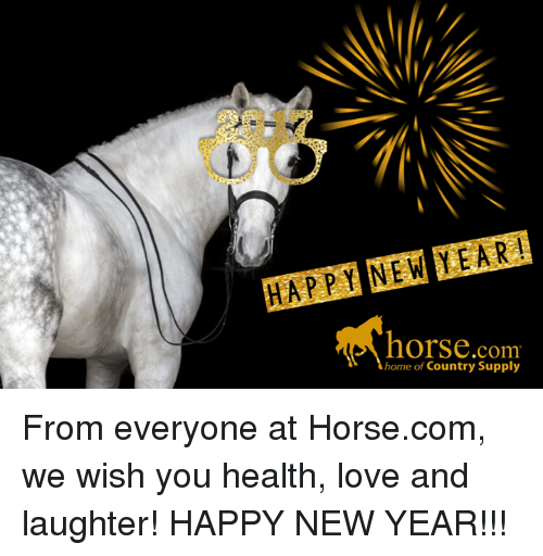 Happy New Year Horse Images 11