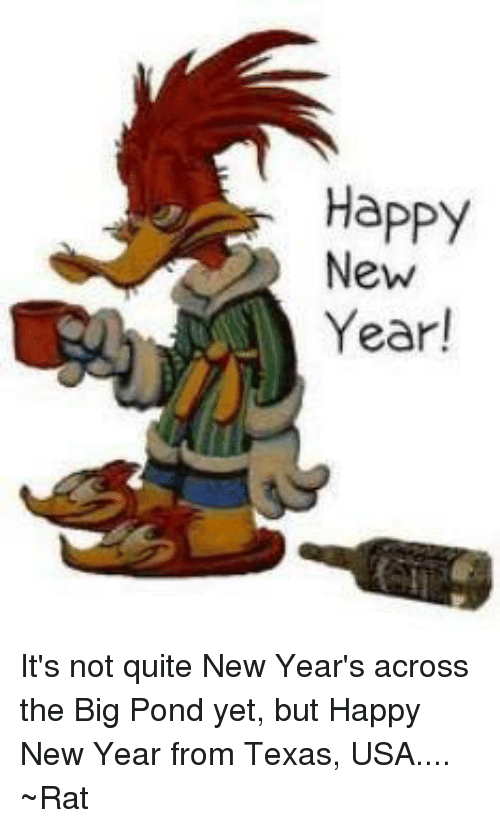 memes texas and happy new year its not quite new years