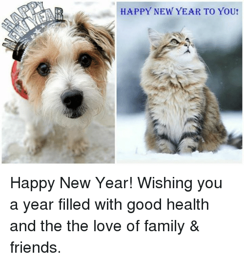 memes and the the happy new year to you happy new