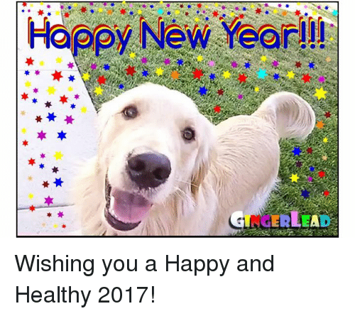 memes and happy new year happy new year wishing