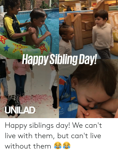 Dank, Happy, and Live: Happy Sibling Day!  UNILAD Happy siblings day! We can't live with them, but can't live without them 😂😂