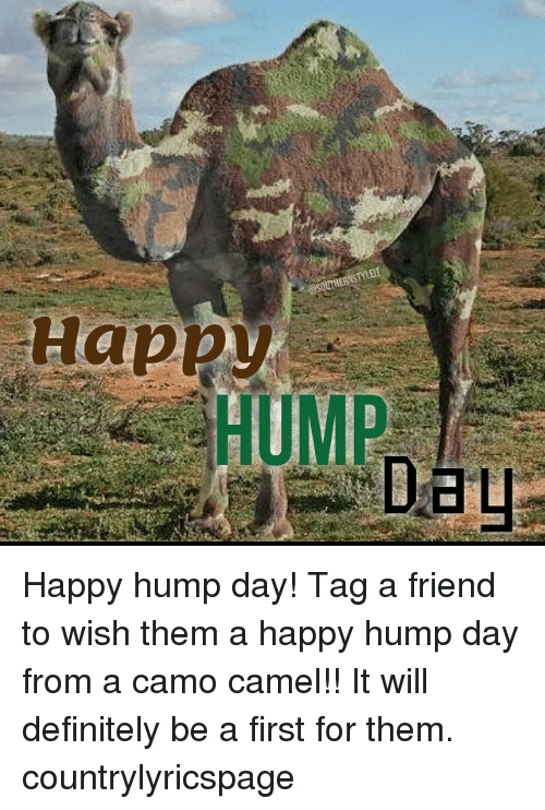 Definitely, Friends, And Hump Day: Happy @SOUTHERNSTYLET HUMP Happy Hump Day !