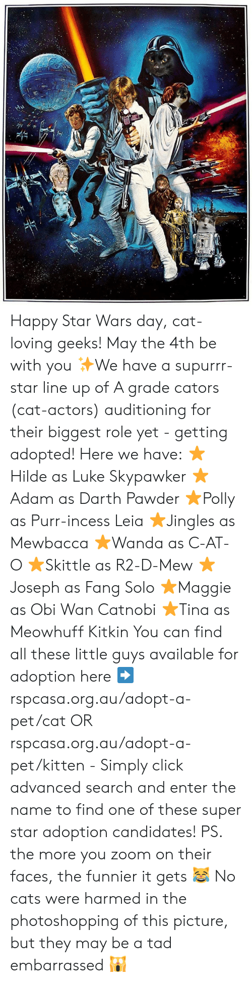 Cats, Click, and Memes: Happy Star Wars day, cat-loving geeks! May the 4th be with you ✨We have a supurrr-star line up of A grade cators (cat-actors) auditioning for their biggest role yet - getting adopted! Here we have: ⭐Hilde as Luke Skypawker ⭐Adam as Darth Pawder ⭐Polly as Purr-incess Leia ⭐Jingles as Mewbacca ⭐Wanda as C-AT-O ⭐Skittle as R2-D-Mew ⭐Joseph as Fang Solo ⭐Maggie as Obi Wan Catnobi ⭐Tina as Meowhuff Kitkin  You can find all these little guys available for adoption here ➡️ rspcasa.org.au/adopt-a-pet/cat OR rspcasa.org.au/adopt-a-pet/kitten - Simply click advanced search and enter the name to find one of these super star adoption candidates!  PS. the more you zoom on their faces, the funnier it gets 😹 No cats were harmed in the photoshopping of this picture, but they may be a tad embarrassed 🙀