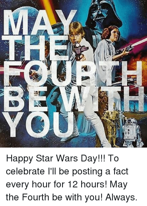 happy star wars day to celebrate ill be posting a 20247500 ✅ 25 best memes about star wars day star wars day memes