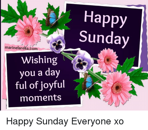 Happy Sunday Marinelarekacom Wishing You A Day Ful Of Joyful Moments
