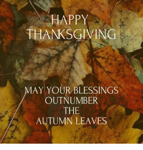 happy thanksgiving may your blessings outnumber the autumn leaves 7211622 happy thanksgiving may your blessings outnumber the autumn leaves