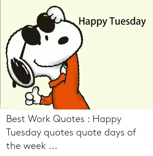 Happy Tuesday Best Work Quotes Happy Tuesday Quotes Quote Days Of The Week Work Meme On Me Me