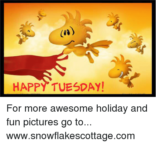 Memes, Happy, and Pictures: HAPPY TUESDAY! For more awesome holiday and fun pictures go to... www.snowflakescottage.com