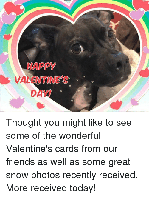 Memes, 🤖, and Vale: HAPPY  VALE  DAY Thought you might like to see some of the wonderful Valentine's cards from our friends as well as some great snow photos recently received.  More received today!