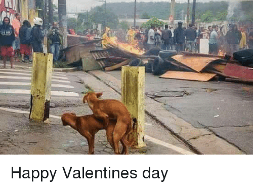 Valentine's Day, Happy, and Day: Happy Valentines day