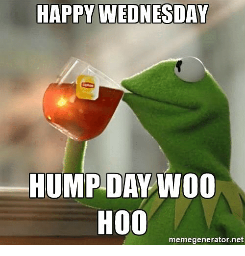 Hump Day, Memes, and Happy: HAPPY WEDNESDAY  HUMP DAY WOO  H00  memegenerator.net