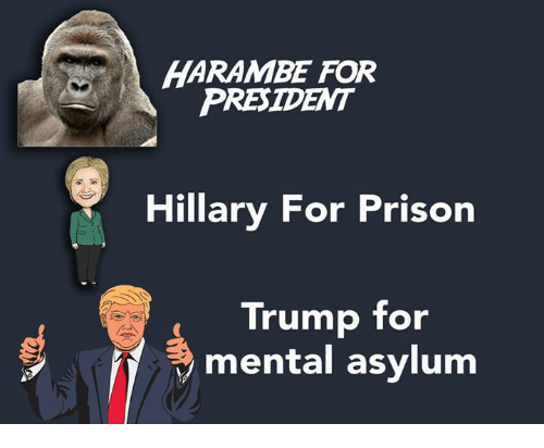 Memes, Prison, and Presidents: HARAMPE FOR  PRESIDENT  Hillary For Prison  Trump for  Sy mental asylum