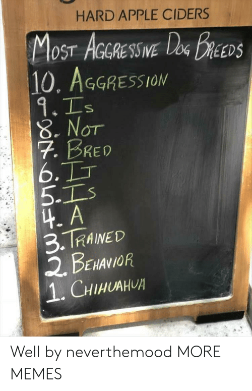 Apple, Dank, and Memes: HARD APPLE CIDERS  OST AGGRESSIVE  10, AGGRESSION  DEEDS  8. Nor  7. BRED  6.  5-1  4. A  3.TRAINED  2. BENANOR  1.CHIHUAH Well by neverthemood MORE MEMES
