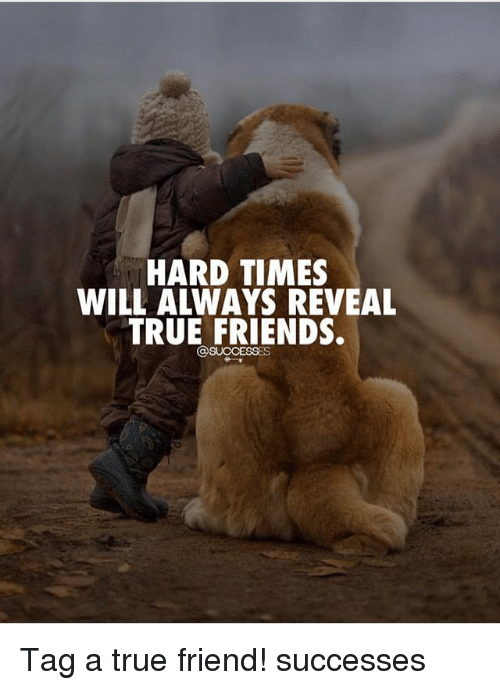 Friends, Memes, and True: HARD TIMES  WILL ALWAYS REVEAL  TRUE FRIENDS. Tag a true friend! successes