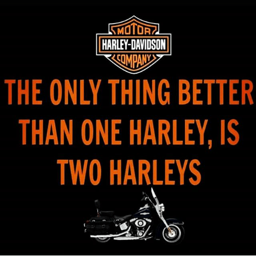 harley davidson the only thing better than one harley is two harleys
