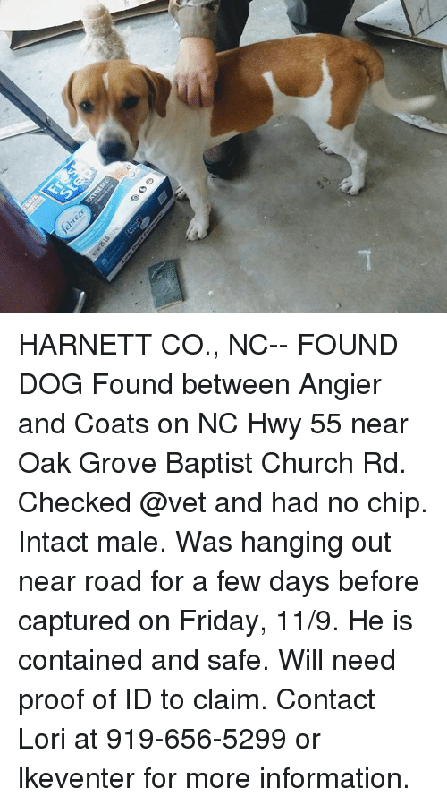 Hwy 55 Near Me >> Harnett Co Nc Found Dog Found Between Angier And Coats On