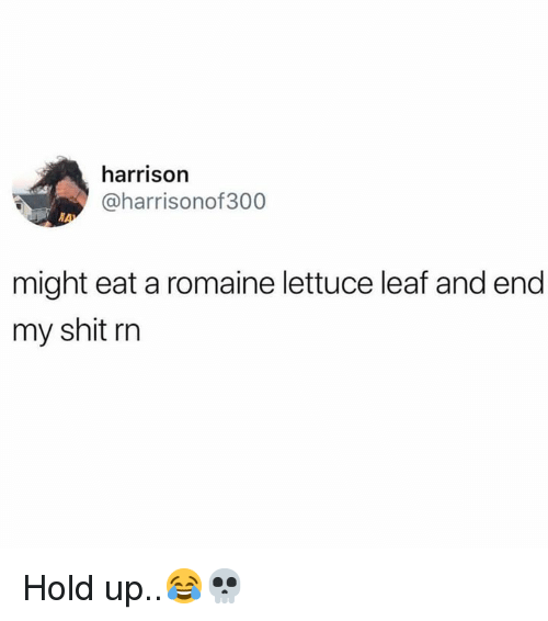 Shit, Hood, and Leaf: harrison  @harrisonof300  might eat a romaine lettuce leaf and end  my shit rn Hold up..😂💀