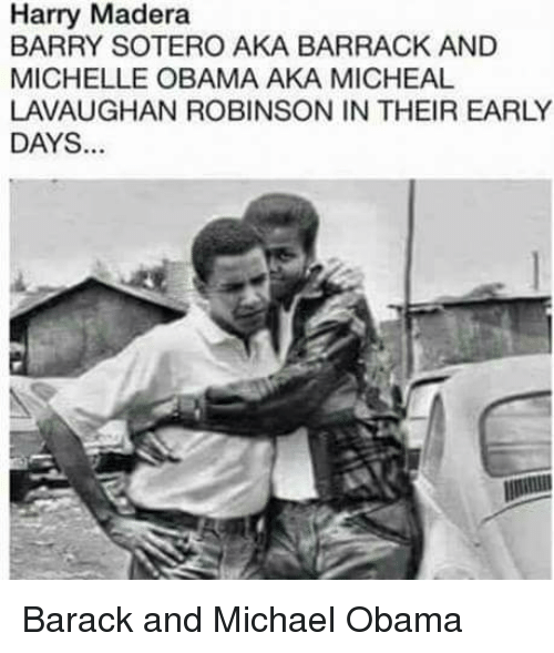 Image result for barry soetoro and michael robinson