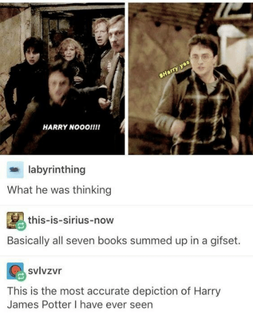 🔥 25+ Best Memes About Harry James Potter | Harry James