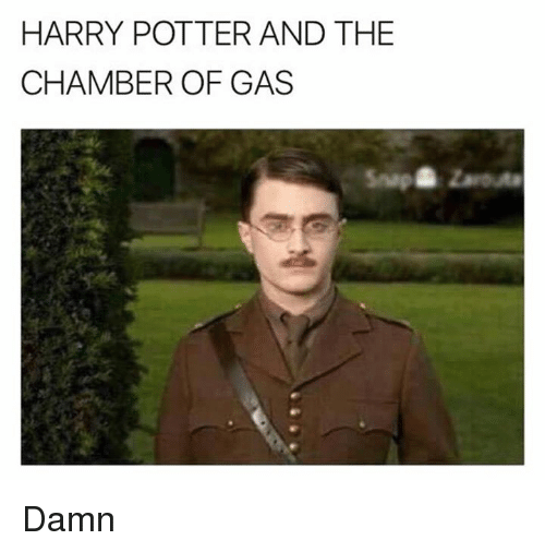 Harry Potter And The Chamber Of Gas