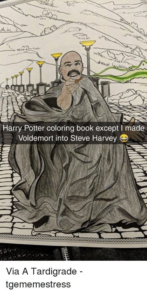 Harry Potter Coloring Book Except I Made Voldemort Into Steve Harvey