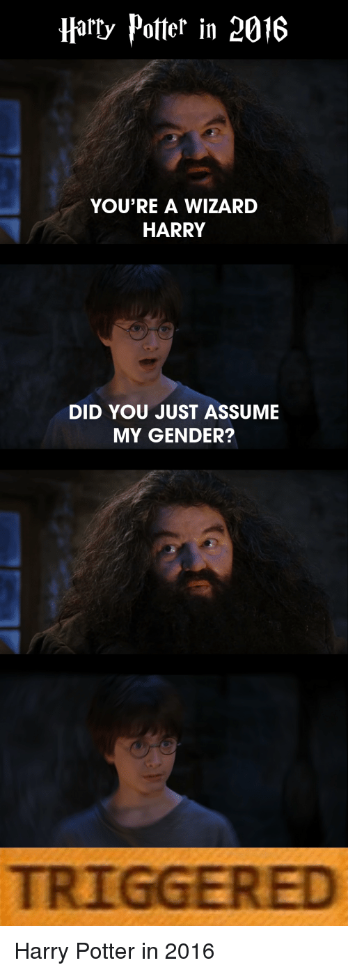 Reddit, Wizards, and Gender: Harry Potter in 2016 YOU'RE A WIZARD