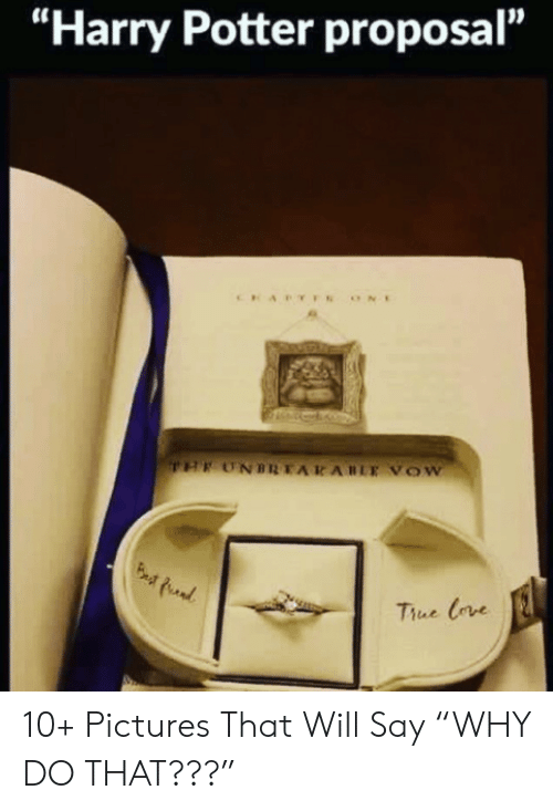 """Harry Potter, Pictures, and Potter: """"Harry Potter proposal""""  Thue Crve 10+ Pictures That Will Say """"WHY DO THAT???"""""""