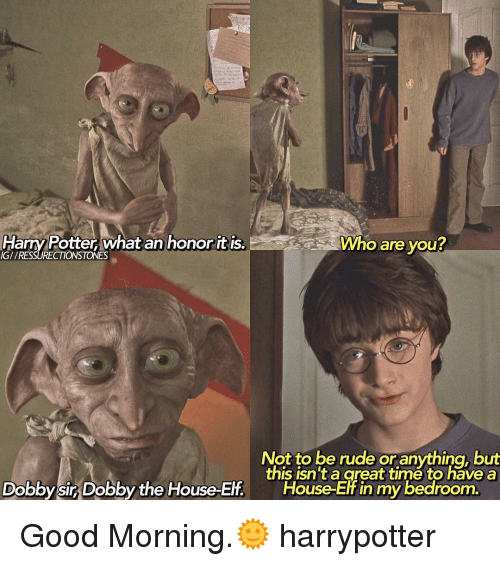 25 best memes about dobby the house elf dobby the house for This isn t my beautiful house