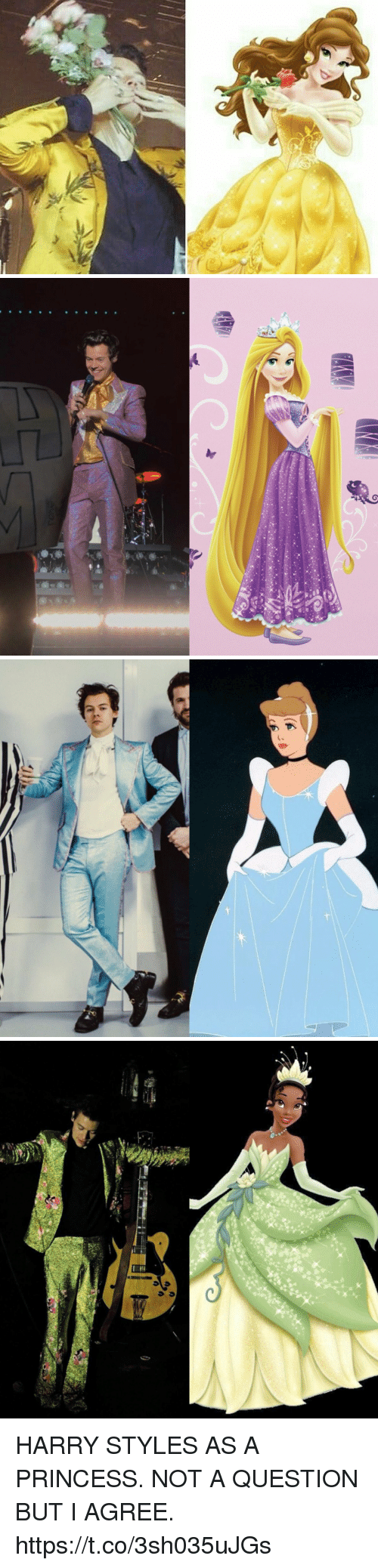 Harry Styles, Princess, and Girl Memes: HARRY STYLES AS A PRINCESS. NOT A QUESTION BUT I AGREE. https://t.co/3sh035uJGs