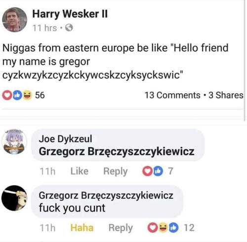 """Be Like, Hello, and Cunt: Harry Wesker II  11 hrs  Niggas from eastern europe be like """"Hello friend  my name is gregor  cyzkwzykzcyzkckywcskzcyksyckswic""""  OD 56  13 Comments 3 Shares  Joe Dykzeul  Grzegorz Brzęczyszczykiewicz  00 7  11h Like Reply  Grzegorz Brzęczyszczykiewicz  fuck you cunt  12  Haha  Reply  11h"""
