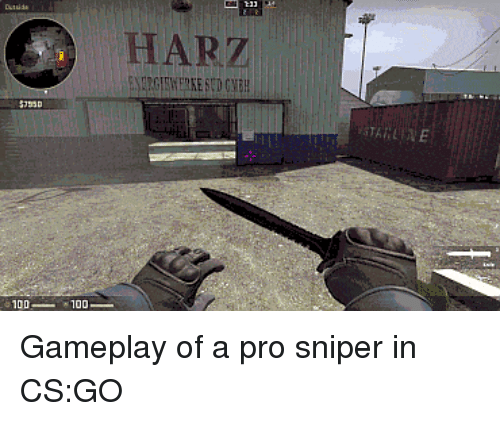 HARZ Gameplay of a Pro Sniper in CSGO | Pro Meme on ME ME