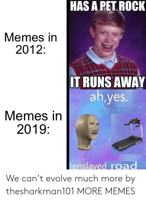 Dank, Memes, and Target: HAS A PET ROCK  Memes in  2012:  IT RUNS AWAY  ah,yes.  Memes in  2019:  enslaved road We can't evolve much more by thesharkman101 MORE MEMES