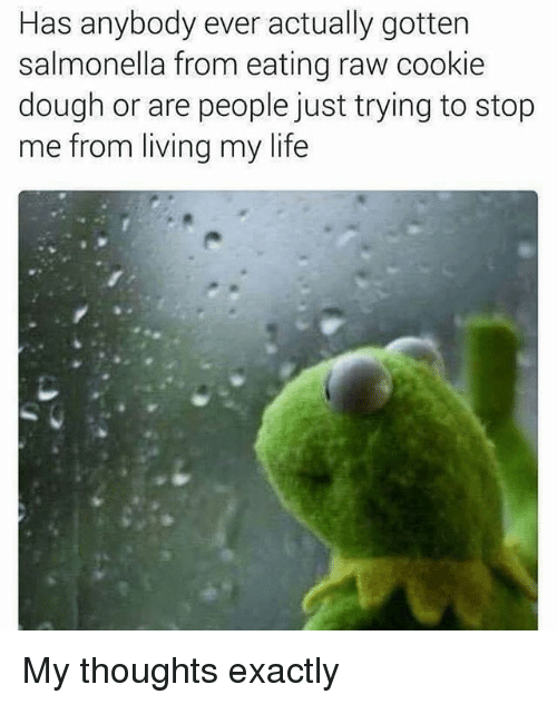 Life, Memes, and Living: Has anybody ever actually gotten  salmonella from eating raw cookie  dough or are people just trying to stop  me from living my life My thoughts exactly