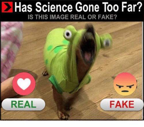 Fake, Memes, and Image: Has Science Gone Too Far?  IS THIS IMAGE REAL OR FAKE?  REAL  FAKE