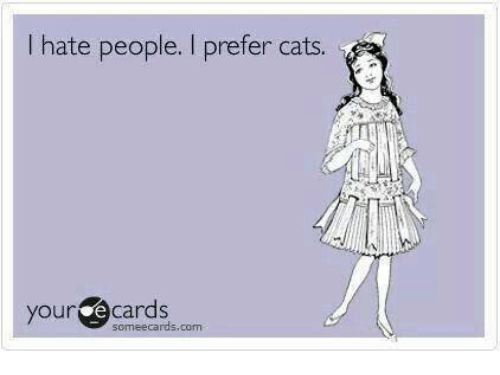 Cats, Grumpy Cat, and Someecards: hate people. I prefer cats.  your e cards  someecards, com