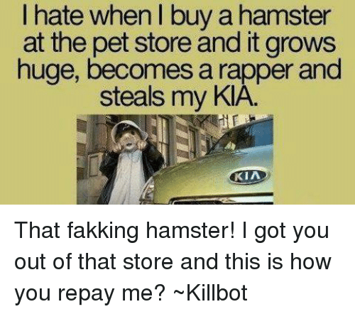 hate when buy a hamster at the pet store and 4654805 ✅ 25 best memes about xhamster com xhamster com memes