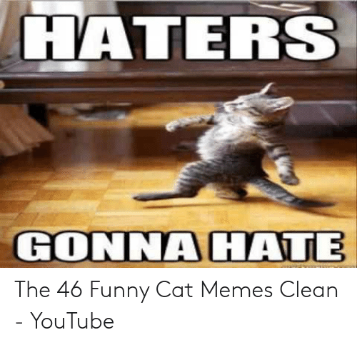 Haters Gonna Hate The 46 Funny Cat Memes Clean Youtube
